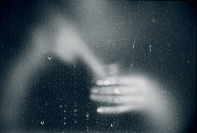 Donata Wenders_Blue Brush II, 2015